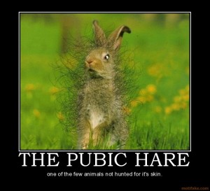 the-pubic-hare-september-challenge-oh-hair-sorry-about-that-demotivational-poster-1252069952